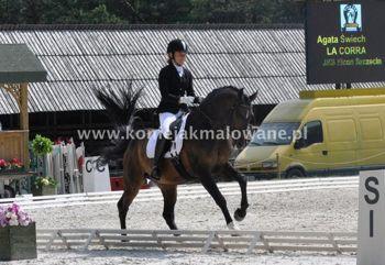 2013.09.26 Ciekawe konie minionego sezonu
